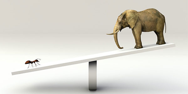 Ant and elephant on a seesaw representing proportionality in eDiscovery.